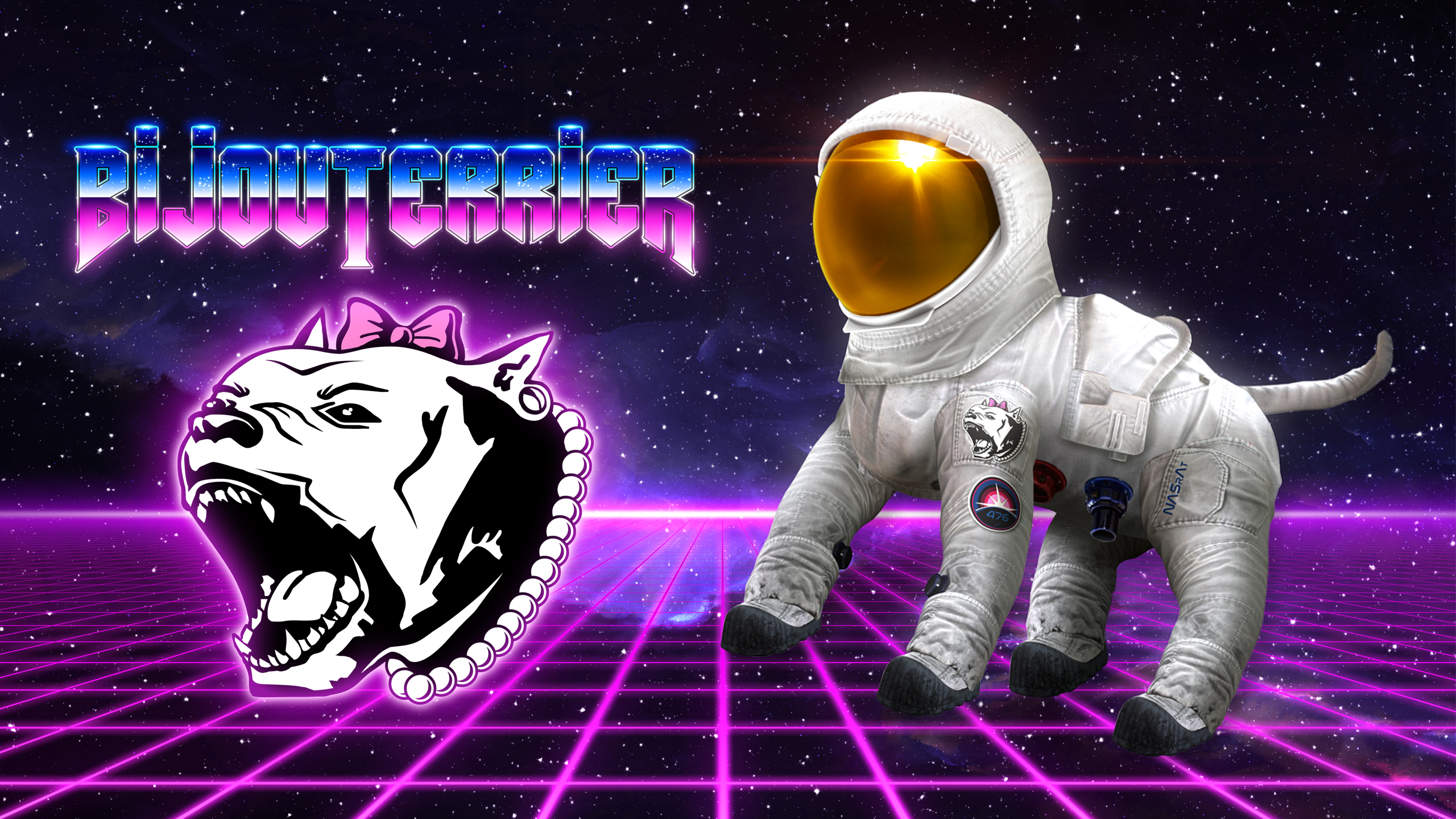 spaceshit captain bijouterrier